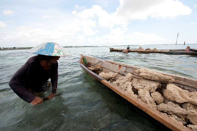 Women too mine corals for a living starting from 6am till 4pm. They make two boat loads of mined corals a day and each boat load makes them Rupiah80,000 or US$8. Wanci, Wakatobi, South Sulawesi, Indonesia. 10 November 2009